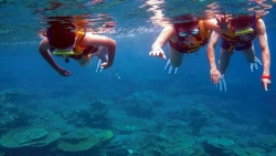 PRIVATE SNORKELLING TOURS