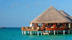 Constance Hotels And Resorts Maldives Restaurants & Bars