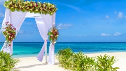 Cocoon Beach Wedding