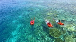 Maldive Cocoon Diving & Water Sports