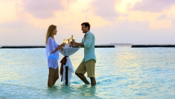 Romance & Honeymoons